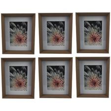 Madison Timber & Glass Photo Frame (Set of 6)