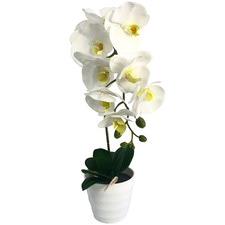 50cm Faux Orchid Plant