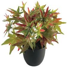 24cm Faux Maple Plant