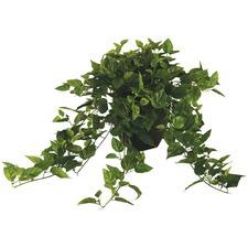 76 x 60cm Faux Ivy with Black Pot