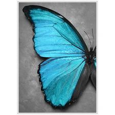 Blue Butterfly Framed Canvas Wall Art