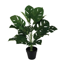 Faux Monstera Plant in Black Pot