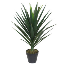 75cm Potted Faux Yucca Plant