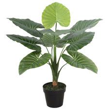 60cm Potted Faux Taro Plant