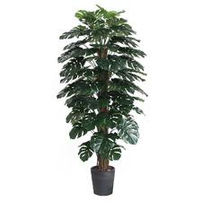 180cm Potted Faux Monstera Plant