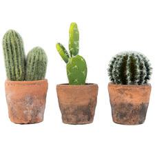 3 Piece Potted Faux Cactus Plants Set