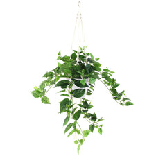 Hanging Potted Faux String Of Hearts Plant