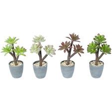 4 Piece Potted Faux Succulent Plants Set
