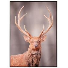 Edward The Deer Framed Canvas Wall Art