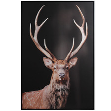 Deer Framed Canvas Wall Art