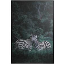 Zebra Framed Canvas Wall Art