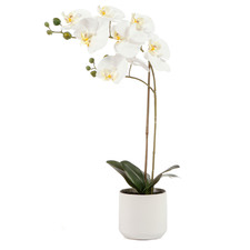 Potted Faux Orchid Plant