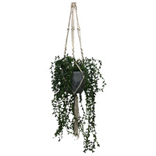 106cm Potted Faux Hanging Pearl Plant