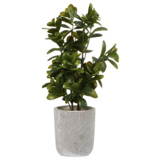 40cm Potted Faux Sweet Plum Plant
