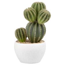 25cm Faux Cactus Plant in Cement Pot