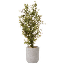 48cm Potted Faux Chinese Perfume Plant