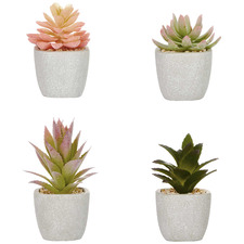 4 Piece Potted Faux Echeveria Succulent Set
