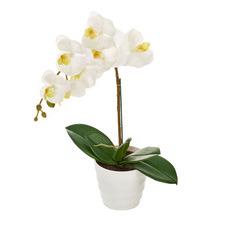 50cm Potted Faux Orchid Plant