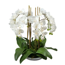 Faux Phal Orchid with White Pot