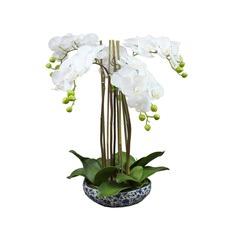 55cm Long Faux Orchid in Dynasty Pot