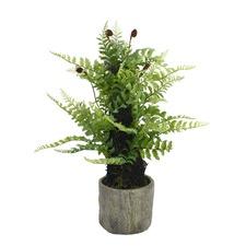 Faux Nephrolepsis Fern Plant with Pot