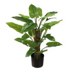 64 cm Faux Emerald Philo Plant with Pot