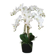 82cm Real Touch Ruptured Faux Orchid In Soil