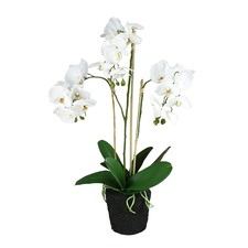 69cm Real Touch Ruptured Faux Orchid In Soil