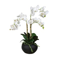 53cm Real Touch Faux Phal Orchid In Pot