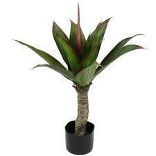 77cm Faux Agave in Plastic Pot