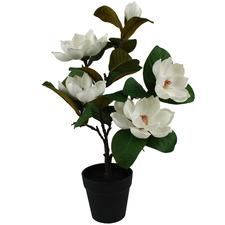 53cm Faux Magnolia Potted Plant