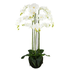 120cm Potted Faux Rugged Orchid