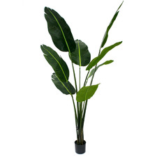 150cm Potted Faux Banana Tree