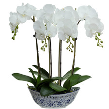 52cm Potted Faux Phalaenopsis Orchid Plant