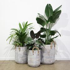 3 Piece White Zorea PE Rattan Planter Set