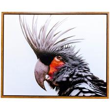 Bird of Flight Framed Canvas Wall Art