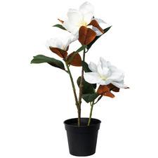 51cm Potted Faux Magnolia Plant