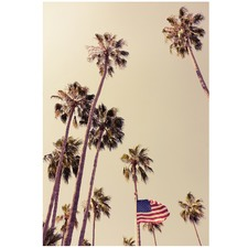 American Palms Printed Wall Art