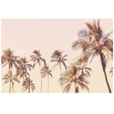 Haleiwa Palms Printed Wall Art