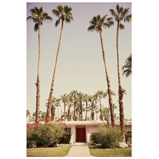 Palm Springs Vista Las Palmas Printed Wall Art