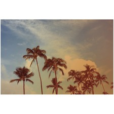 Tropical Palms Printed Wall Art