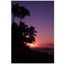 Hawaiian Sunset Printed Wall Art