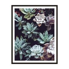 Succulent Framed Wall Art by ArteFocus