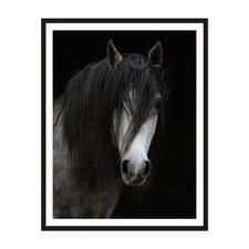 Horse Framed Wall Art by ArteFocus