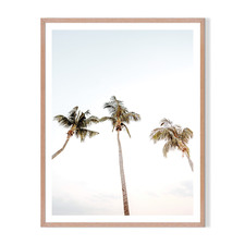 3 Palms Framed Printed Wall Art