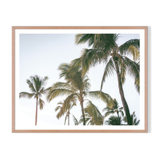 Palm Holiday Framed Printed Wall Art