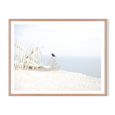 Perched Framed Printed Wall Art