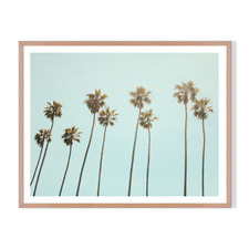 Palm Drive Framed Printed Wall Art