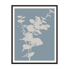 Plant Silhouette 3 Framed Printed Wall Art