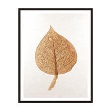 Natures Veins Framed Printed Wall Art
